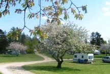 Campings Denemarken voor kids / Campings Denemarken voor kids kamperen met je gezin