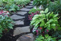 Garden ideas / by Dawn Bodine