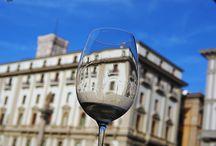 VINO A GOGO CON GOWINE / Associazione no profit dedicata a tutti gli appassionati di vino e cultura del territorio. Promuove degustazioni e va alla scoperta di cantine meno conosciute ma non per questo meno valide!