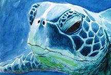 θαλασσα  χελωνα