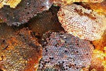 Organik arıcılık(arganıc beecultur)