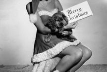 chistmasfashionboard / by Helena Ivancic