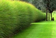 Deco jardin
