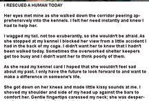 my dog story