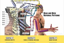 nöroproloterapi