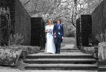 Ness Gardens Wedding Photography