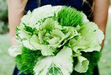 {  flowers  } / fresh cut flowers and arrangements