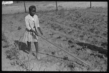 History of School Gardens / Digging into this awesome tradition!