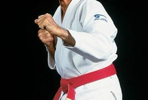 Jujitsu Training / by :-)Native Horse.man