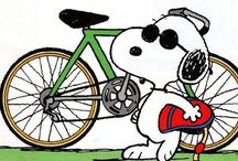 A Bicycle  - It's the way to go
