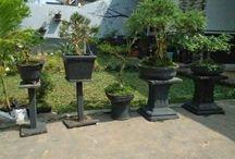 simple garden