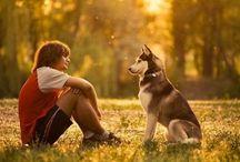 С собакой