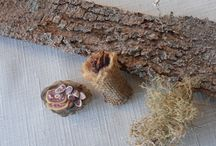 Fairy houses and accessories / by Bonnie Lou