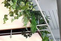 Styling kantoor MVO Nederland