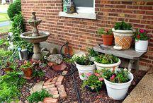 Yard stuff / by Phyllis Taylor