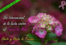 Breast Cancer Awareness / Imágenes alusivas al mes internacional de la lucha contra el Cáncer de Mama que es OCTUBRE.