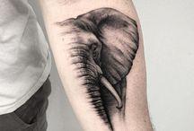 Tatuonnit