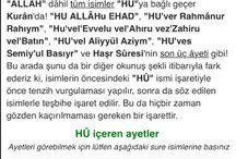 AHMET HULUSİ