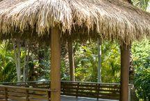 rio  safari de elche / vamos amigos animaros a ir a este maravilloso lugar