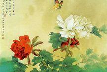 Zou Chuan An