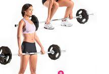 barra ejercicio
