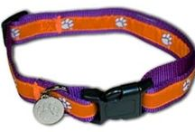 College Sports Dog Collars / http://sportsfandogcollars.com/store/category/college-sports-dog-collars/