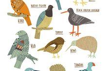 BIRDS NZ