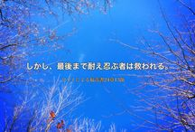(Bible card・聖句カード・聖書通読表)