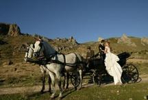 Vehículos de boda / by Sandra Llopis