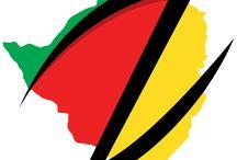 Latest Zimbabwe News