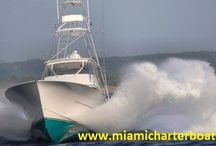 Miami Deep Sea Fishing Charter / Miami Charter Boat offers awesome charter for Fishing.