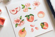 Fruits draw