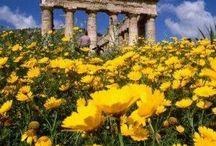 Sicilia / Viaje a Sicilia