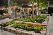Canada Blooms Updates / Updates and Info on Canada Blooms: The Flower and Garden Festival