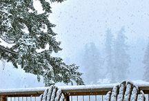 the magic winter