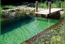 Swimming Pond / Organic swimming pool ideas