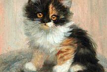 = ^ . . ^ = CATS - Meta Plückebaum