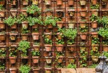 Vertical Gardening / Vertical gardening is a great way to make use of limited space in urban environments. Use some of these ideas in your own garden!