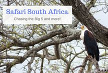 Roam South Africa