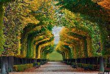 Schönbrunn Palace gardens in Vienna, #Austria #HeathrowGatwickCars.com