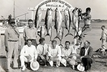 Vintage Fish Photo