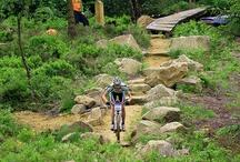 MTB Tracks and Trails