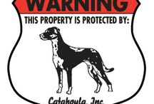 Catahoula Signs and Pictures / Warning and Caution Catahoula Signs. https://www.signswithanattitude.com/catahoula-signs.html