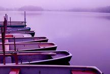 Couleurs: violet / Du mauve au violine en passant par toutes les déclinaisons...