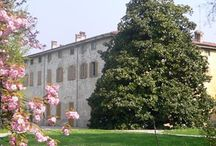 English Summer Camp 2015 - Happy moments / Special moments/people/places for kids in Bergamo: English Summer Camp 2015 by Primomodo. for kids aged 3-12 http://www.primomodo.com/english-summer-camp-primomodo.html