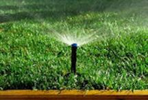 plano sprinkler repair / Professional Irrigation Installation and Sprinkler Repair in Frisco, Texas by Texas Waterboys, Inc.