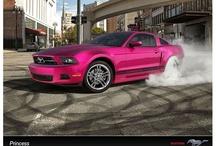 All things pink..... / by Beth Leyva