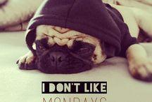 Monday hate