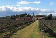 Cantine Cleto Chiarli / CLETO CHIARLI, fondata nel 1860, è la più antica Casa Vinicola dell'Emilia Romagna. Da cinque generazioni condotta dalla famiglia Chiarli, rappresenta oggi il marchio leader del Lambrusco di qualità in Italia e all'estero.