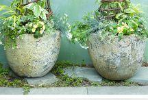 garden / by Barbara Bishop